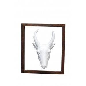 Goat Head in Frame