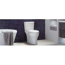 Phantom - 0.8 GPF Single Flush Elongated Toilet