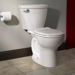 Cadet 3 Tall Height 2-Piece 1.28 GPF Single Flush Round Toilet with Slow-Close Seat - Bone
