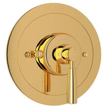 Holborn Thermostatic Trim Plate without Volume Control - English Gold with Metal Lever Handle