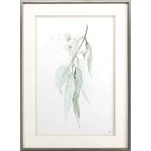 Delicate Eucalyptus I