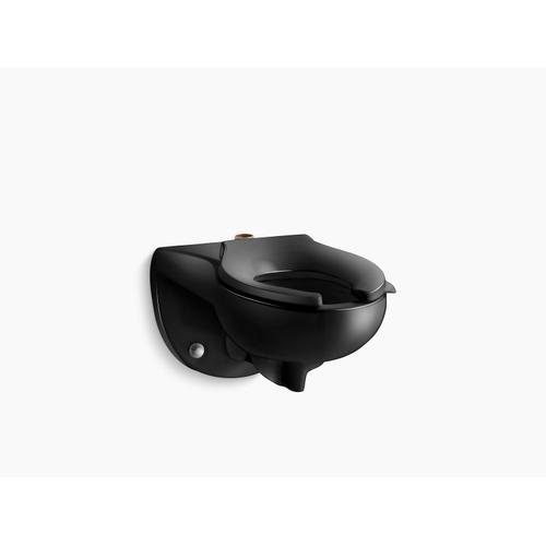 Black Black Wall-mounted Top Spud Flushometer Bowl