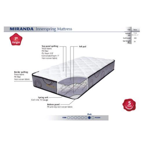 American Star - Miranda - Medium