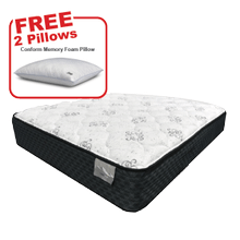 Buy the THERAPEDIC Queen Mattress, get 2 FREE pillows!