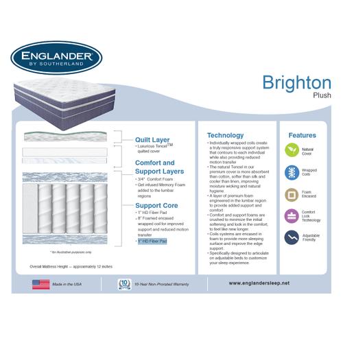 Brighton Plush