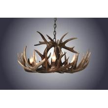 REAL 8 Light Large Single Tiered Whitetail Antler Chandelier