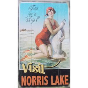 Visit Norris Lake