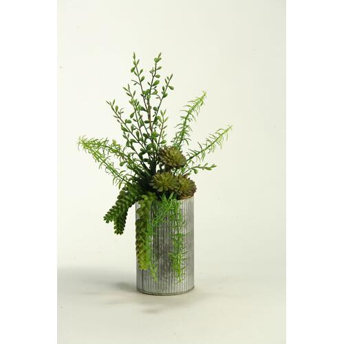 Aloe, Burro Tail, and Succulents in Metal Vase