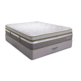 Clearance - Sandmahn Box Top King - Sanitized