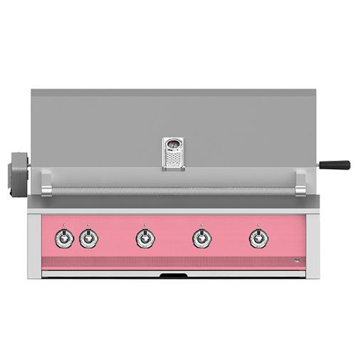 """Hestan - Aspire By Hestan 42"""" Built-In Grill With U-Burner, And Rotisserie LP Coral"""