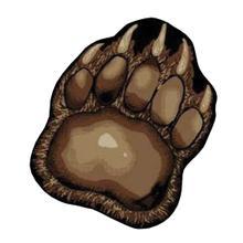 9964 Big Paw
