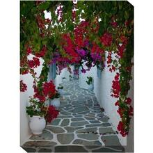 Bougainvillea Path 30 x 40