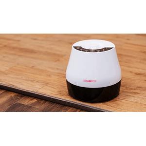 SteamBoy Hot water Onsu Floor Carpet Line l KHSMT-850C (Queen)