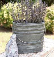 See Details - Bucket with Handle