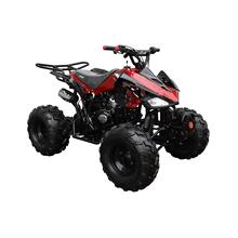 150CC Fully Automatic Full Sized ATV
