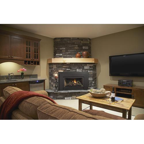 Regency Fireplace Products - Energy E21 Small B-Vent Gas Insert