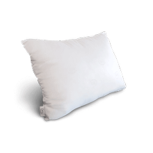 Sleep to Go 2-in-1 Microsupport Pillow
