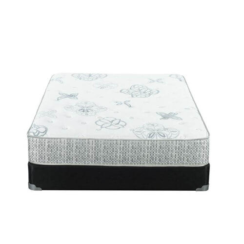 "Elated 11.5"" Plush Mattress"