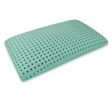 Bio Aloe Queen Low Profile Pillow