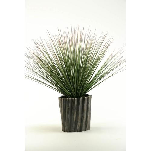 Onion Grass in Ceramic