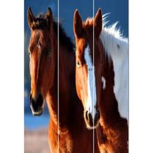 Horse Screen 3 Panel Room Divider