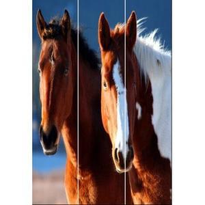 Screen Gems - Horse Screen 3 Panel Room Divider