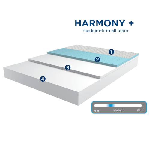 Harmony Plus-Full