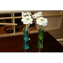 White Scabiosa w/ vase (Priced separately)