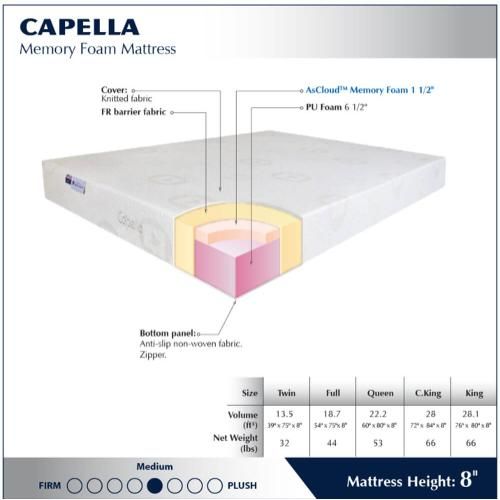 "Capella 8"" - Medium"