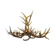REAL 8 Light Elk Antler Chandelier
