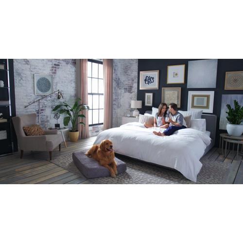 Heritage Sleep - Rejuvenate Plush Talalay Latex 13in