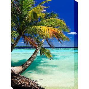 Outdoor Canvas Art - Palm Vertical 30 x 40