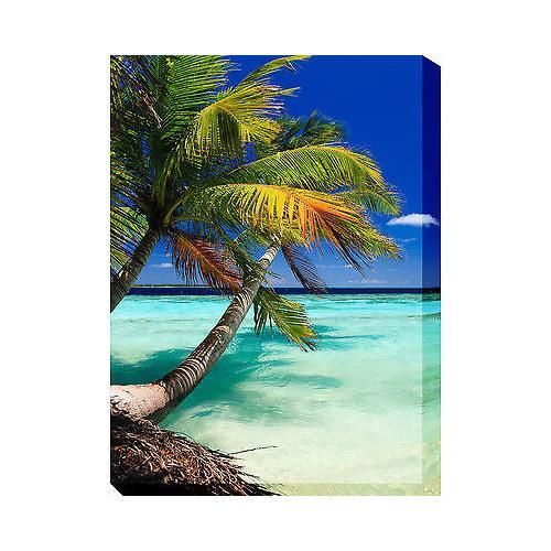 Palm Vertical 30 x 40