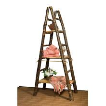 Hickory Showcase Ladder