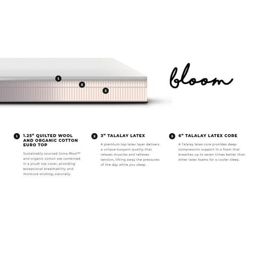 "Bloom 11"" Natural Talalay Latex (Firm)"