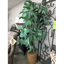 See Details - Tree, 7', w/Light